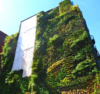 Jardines verticales y cubiertas vegetales tecpa for Historia de los jardines verticales