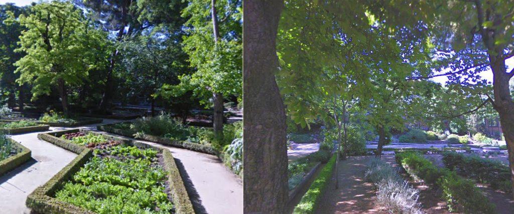 Jardines bot nicos de espa a tecpa formaci n de for Biblioteca digital real jardin botanico