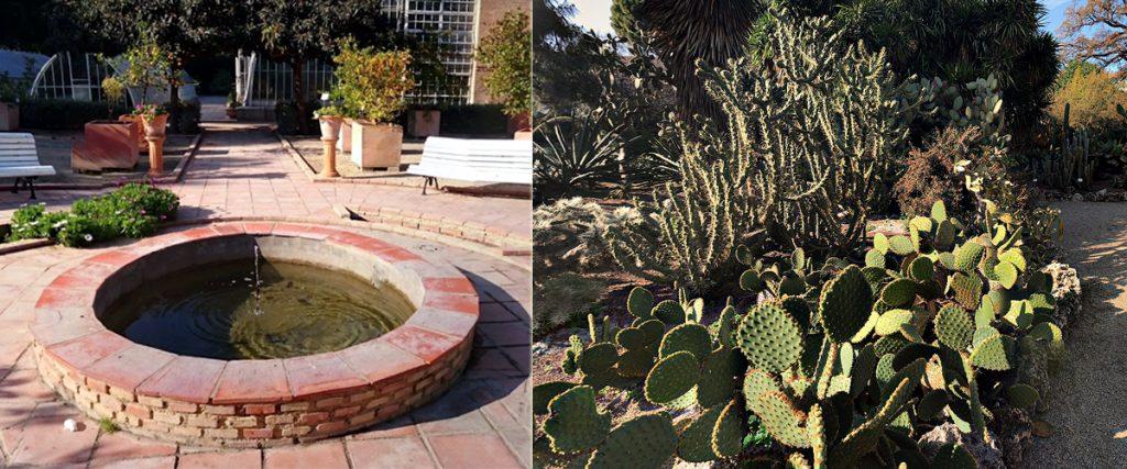 Jardines bot nicos de espa a tecpa formaci n de for Jardin urbano valencia
