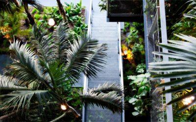 Jardines verticales en hoteles