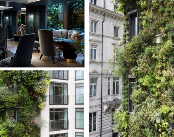 Jardines verticales en hoteles tecpa formaci n de for Hotel el jardin vertical vilafames