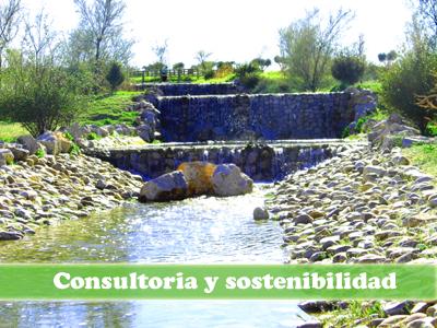 Cursos online de sostenibilidad y consultoria ambiental
