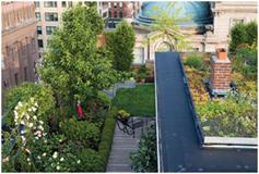 Rooftop Garden Restaurant. Nueva York.