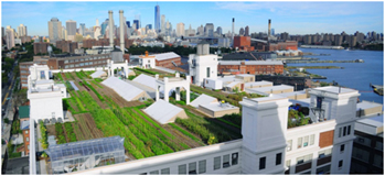 Brooklyn grange. Nueva York.