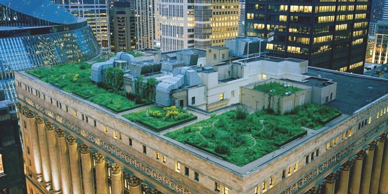 Construcción sostenible: plantas en edificios