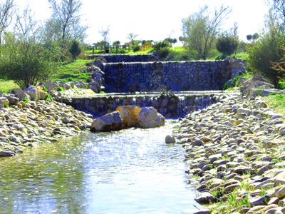 Redacción de proyectos de consultoría ambiental