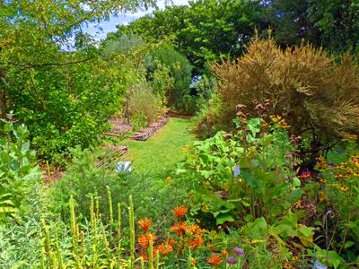 Experto en diseño de jardines