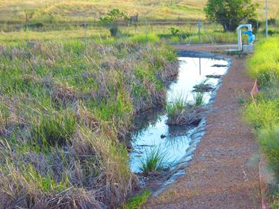 Curso de Depuración de agua residual en pequeñas poblaciones