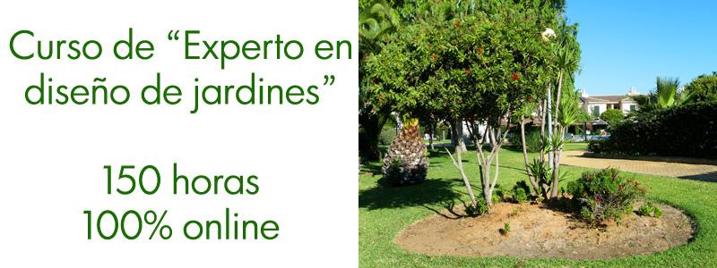 Curso online de Experto en diseño de jardines