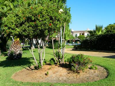 curso diseño de jardines