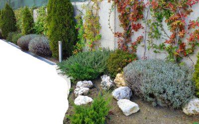 5 razones para estudiar el curso de Experto en diseño de jardines