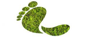 Curso de sostenibilidad ambiental 150 horas online