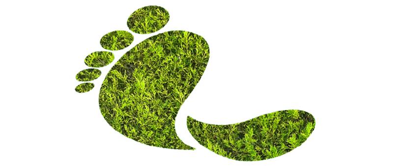 La contaminación de empresas al medio ambiente