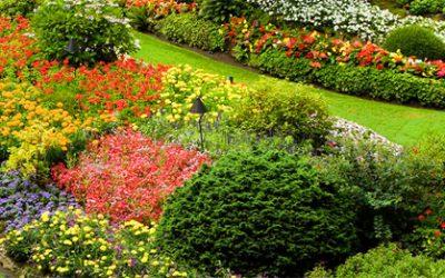Ideas para el diseño de jardines