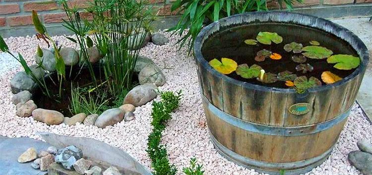 El jardín seco