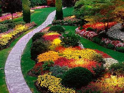 curso de diseño de jardines
