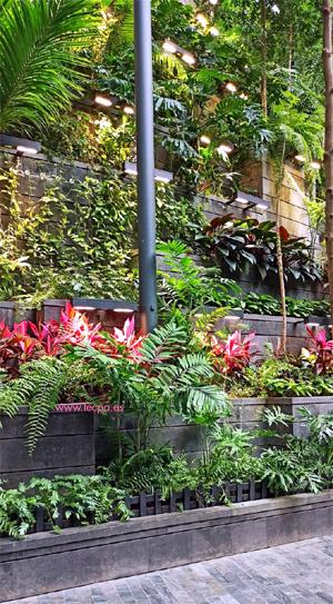 curso diseño de jardines 2020