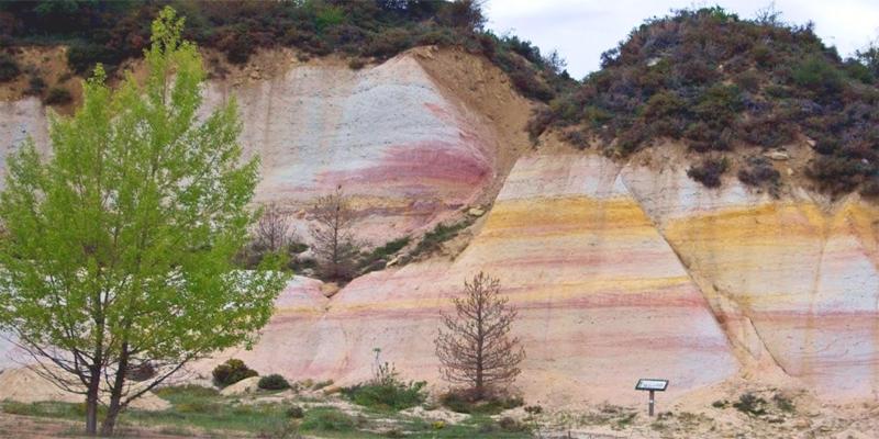 Proyectos de restauración de zonas degradadas