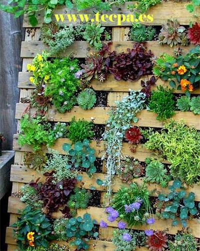 Jardin vertical en terraza con pale