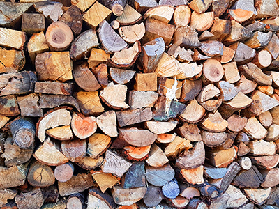 curso biomasa energia
