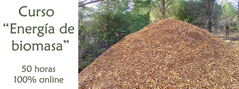 curso de biomasa