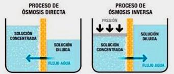osmosis inversa y directa
