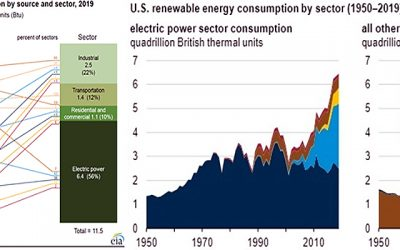 La importancia de la biomasa en USA