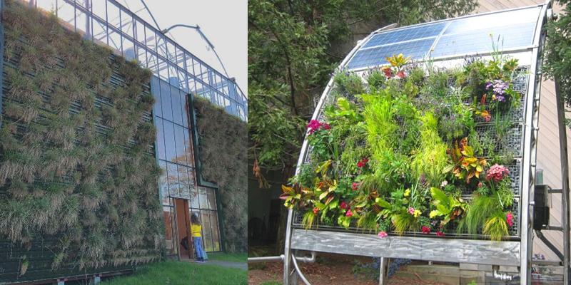 La jardinería vertical